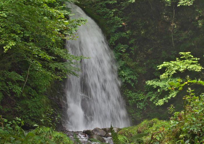 13-9-4-1イノシシの滝
