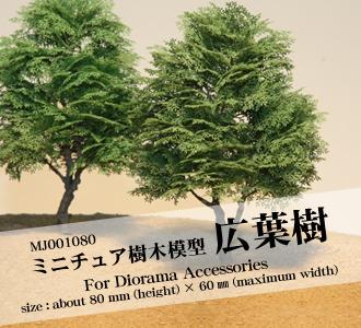 image_mj001080.jpg