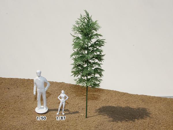 リアルツリー・緑の竹(80)4