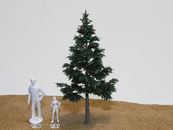 リアルツリー・深緑の針葉樹(80)1