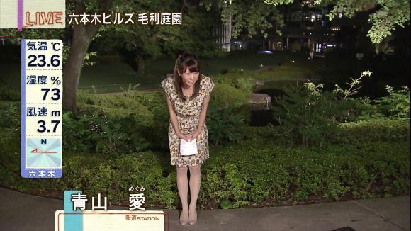 aoyamamegumi_20130715_11.jpg