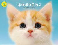 ほのぼの子猫カレンダー