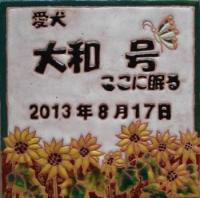 DSC02909_convert_20131106205353.jpg