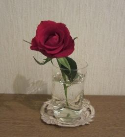 ハーバー 薔薇