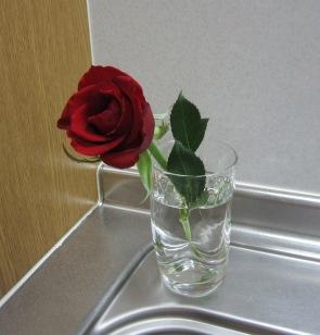 薔薇 シンク