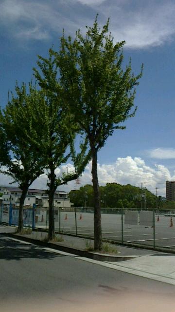 2013 8月雲