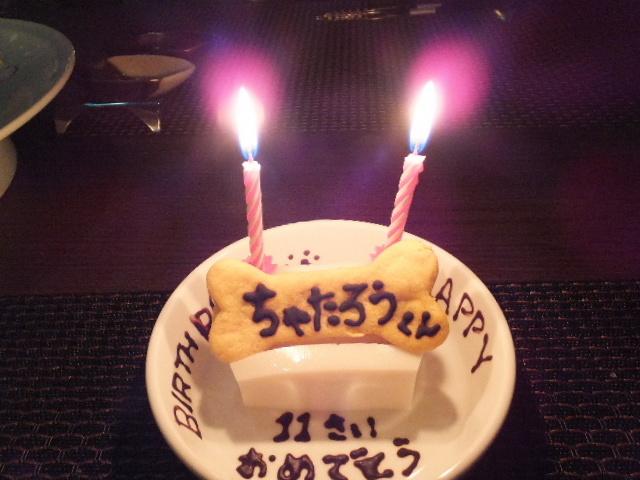 201410ubudo0073.jpg