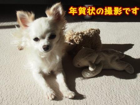 blog4851a.jpg