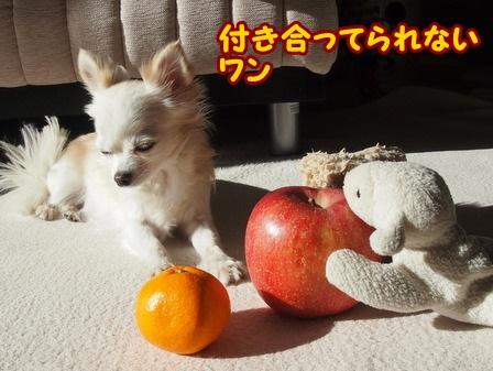 blog4854a.jpg