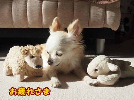 blog4868a.jpg