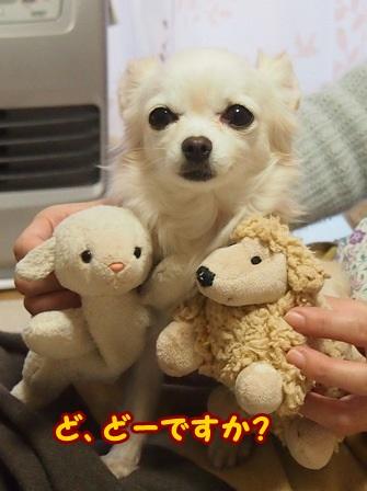 blog4888a.jpg
