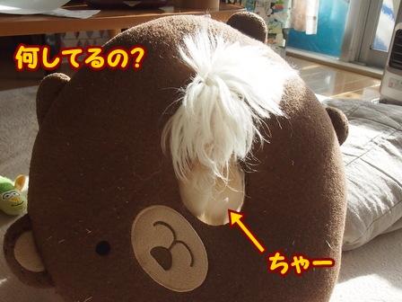 blog5038a.jpg