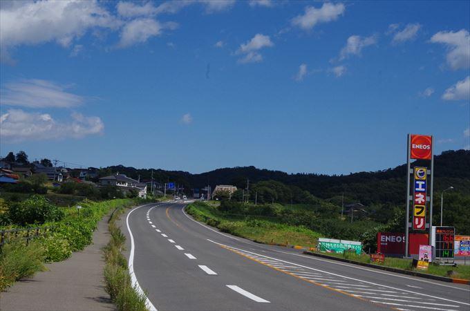 IMGP7469_R.jpg