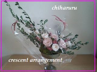 crescent1.jpg