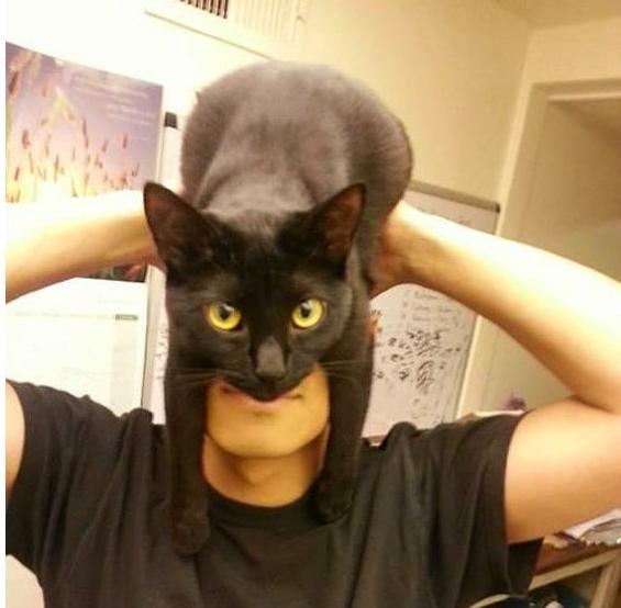 黒いコウモリのような仮面が特徴のバットマン。このコスプレが黒猫を使って簡単にできると