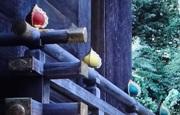 元伊勢籠神社6