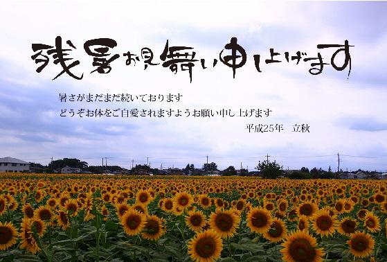 残暑2013-2