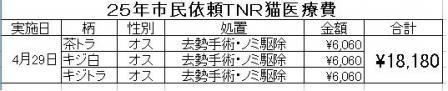 市民依頼TNR2504