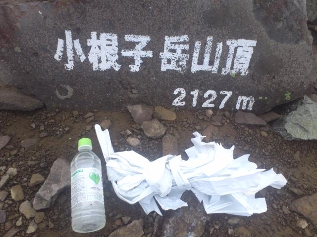 小根子岳までの未回収テープの量