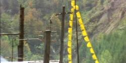 飛び込んでいる黄色いハンカチ