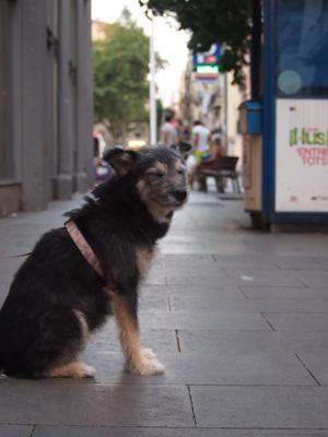 Barcelona2014Barceloneta06