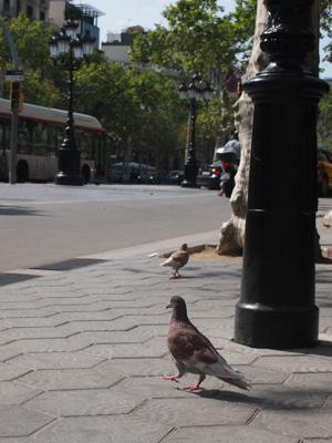 Barcelona2014LastVille07