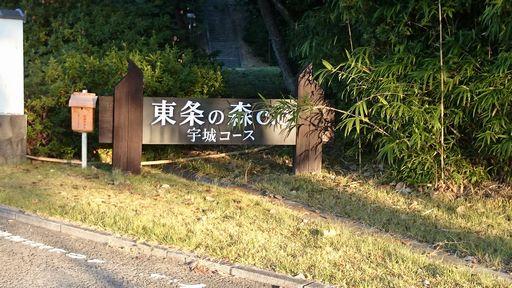 ゴルフ①20141019