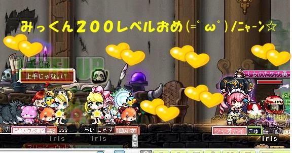 Maple130429_132043.jpg