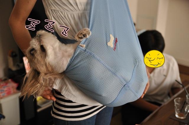 2013,07,17 パオちゃんいらっしゃ~い 031