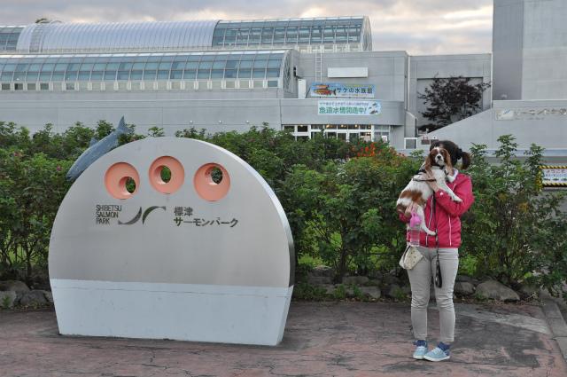 2013,09,21 北海道車中泊3日目 095
