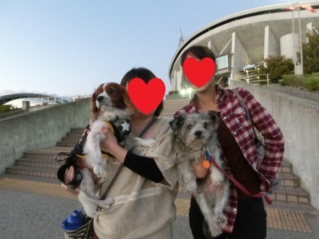 2013,10,15 しんちゃんとの再会 400