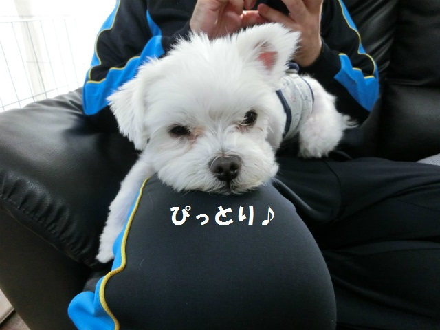2013,11,02 秋・万葉の旅 004