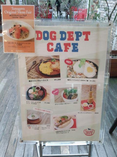 ドッグデプト・カフェ 玉川店1