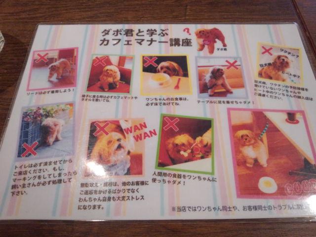 ドッグデプト・カフェ 玉川店4