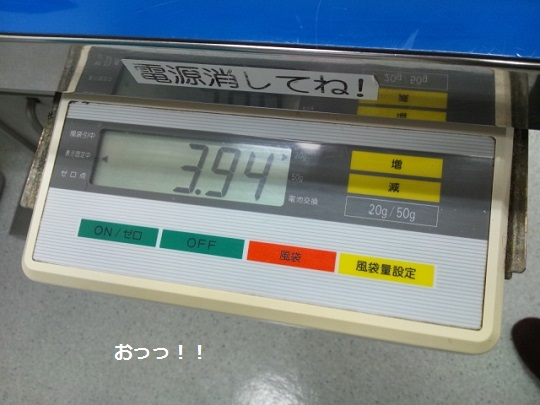 DSC_1249.jpg