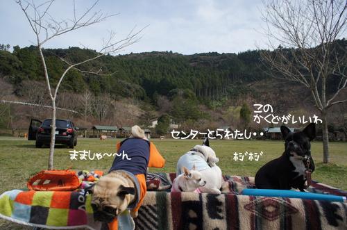 zenninn4.jpg