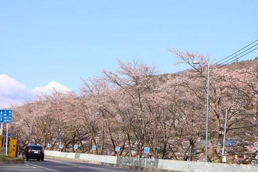 20130501つま恋村1