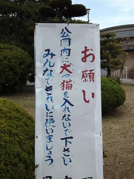 20130521甲府公園1
