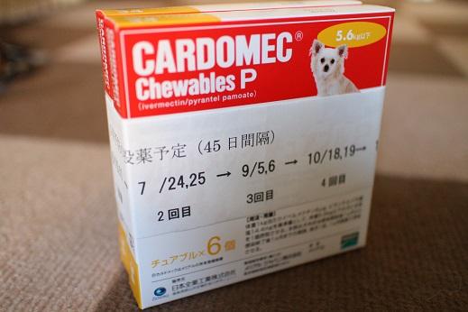 20130524フィラリアのお薬