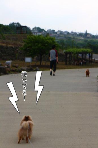 20130610公園入口2 (1)