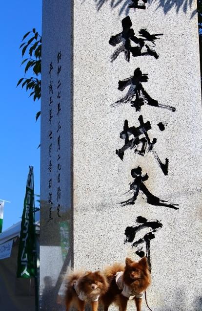 20131014松本城1