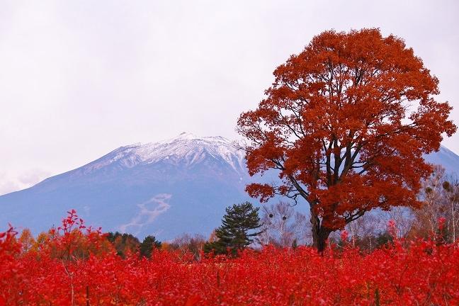 20131111御嶽山3