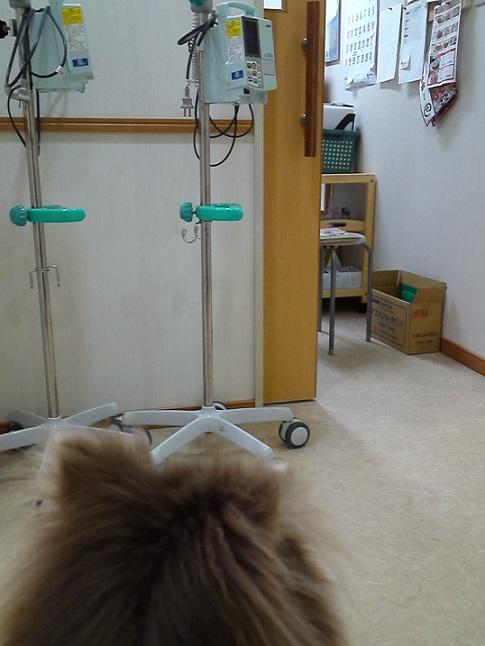 20131123病院
