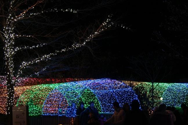 20131210虹のトンネル