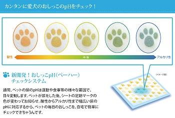 dog-p1.jpg