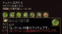 357_20130802205559ff0.jpg