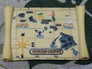 CIMG5033 マグネット ハワイ