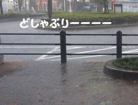 土砂降りー