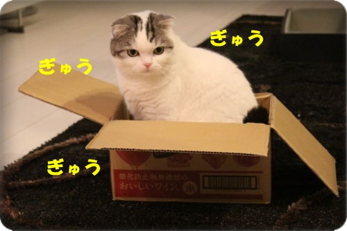 2-002_2013101320561326a.jpg