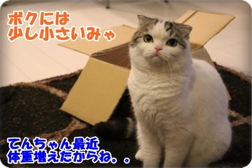 3-003_2013101320561287f.jpg